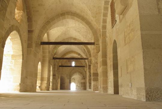 citadel 6